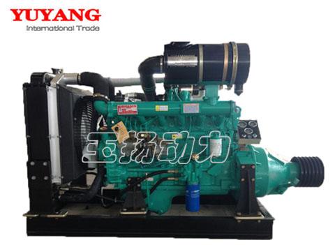 R6105P  Fixed power diesel engine